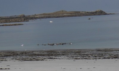 Marche aquatique Tréompan